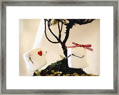 Sweet Surprise Framed Print by Heather Applegate