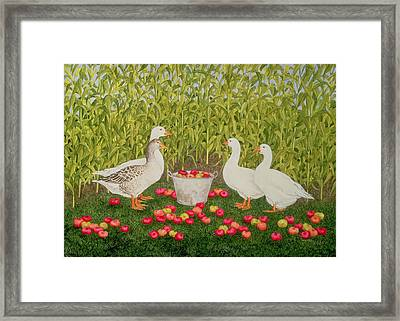 Sweetcorn Geese Framed Print by Ditz