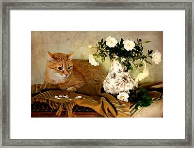 Sweetheart Roses Framed Print by Diana Angstadt