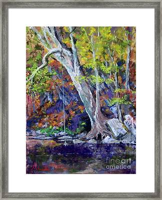 Swimming Hole Framed Print by Bruce Schrader