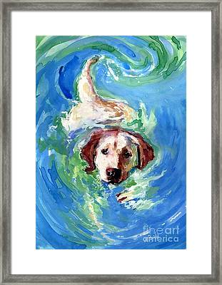 Swirl Pool Framed Print by Molly Poole
