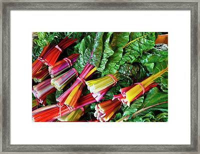 Swiss Chard At The Community Supported Framed Print by Jerry and Marcy Monkman