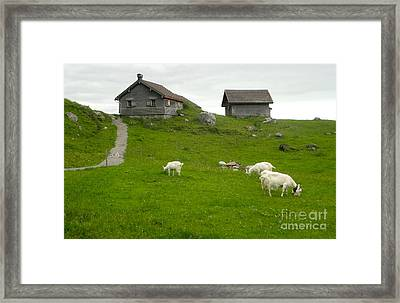 Switzerland Framed Print by Gregory Dyer