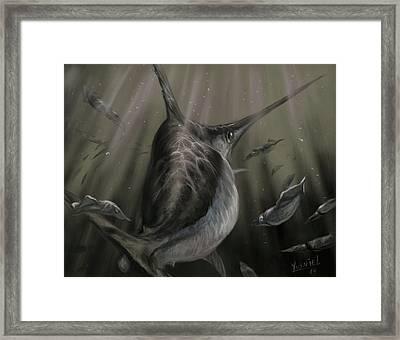 Sword Fish  Framed Print by Yusniel Santos