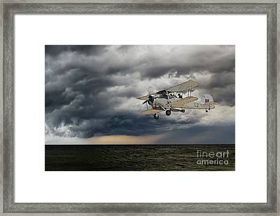 Swordfish  Framed Print by J Biggadike