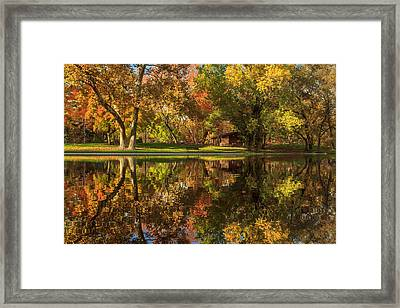 Sycamore Reflections Framed Print by James Eddy