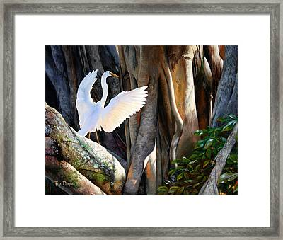 Symphony At Sunrise Framed Print by Tim Davis