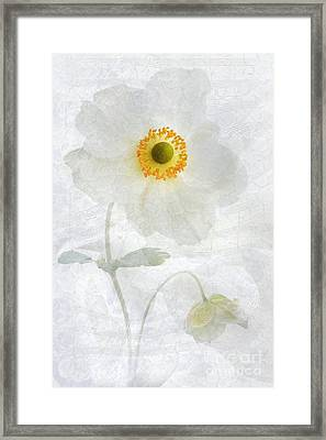Symphony Framed Print by John Edwards