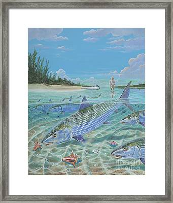 Tailing Bonefish In003 Framed Print by Carey Chen