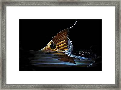 Tailing Redfish Framed Print by Nick Laferriere