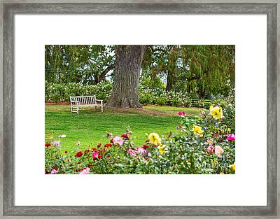 Take A Seat - Beautiful Rose Garden Of The Huntington Library. Framed Print by Jamie Pham