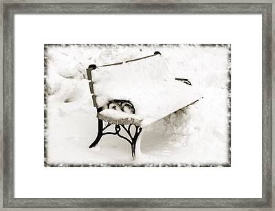 Take A Seat  And Chill Out - Park Bench - Winter - Snow Storm Bw Framed Print by Andee Design