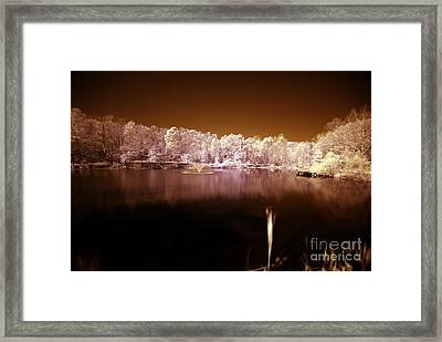 Take Five Framed Print by Floyd Menezes