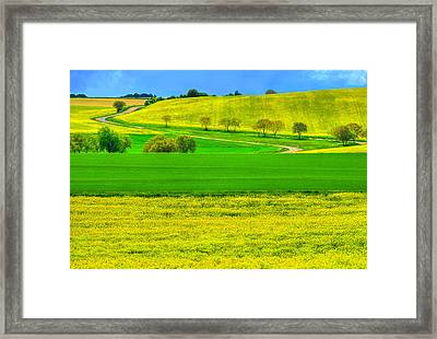Take Me Home Country Road Framed Print by Midori Chan