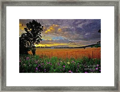 Take Me Home Framed Print by Lianne Schneider