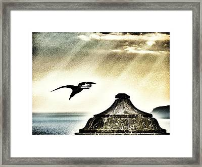 Take Off Framed Print by Marianna Mills