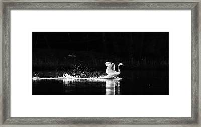 Take Off Framed Print by Rose-Maries Pictures