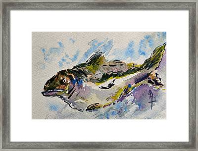 Take The Bait Framed Print by Beverley Harper Tinsley
