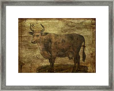 Take The Cow By The Horns Framed Print by Sarah Vernon