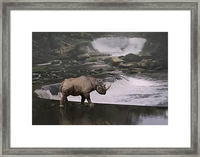 Taking A Stroll  Framed Print by Jack Zulli