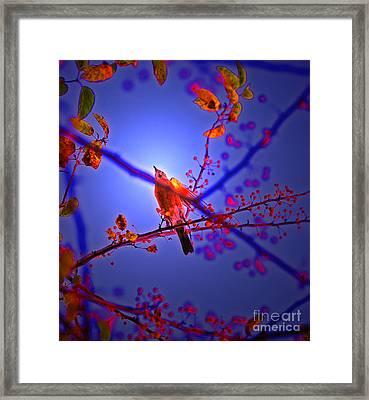 Taking Flight By Jrr Framed Print by First Star Art