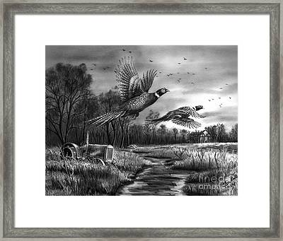 Taking Flight  Framed Print by Peter Piatt