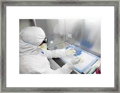 Taking Microbiological Samples Framed Print by Food & Drug Administration
