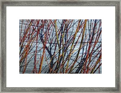 Taking Over Framed Print by Donna Blackhall