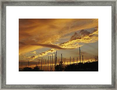 Tall Masts At Sunset Framed Print by Jane Eleanor Nicholas