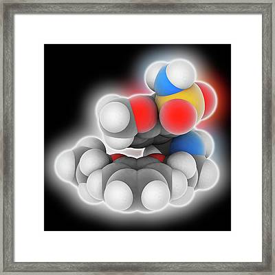 Tamsulosin Molecular Model Framed Print by Laguna Design