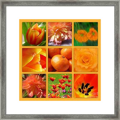 Tangerine Dream Window Framed Print by Joan-Violet Stretch