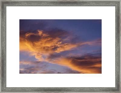 Tangerine Swirl Framed Print by Caitlyn  Grasso
