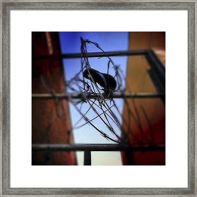 Tangled Framed Print by Elena Bouvier