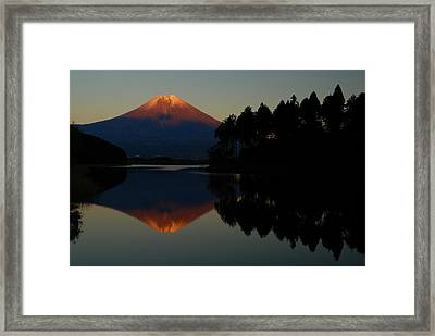 Tanukiko Fuji Framed Print by Aaron S Bedell