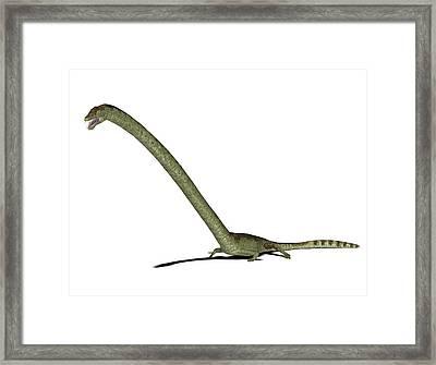 Tanystropheus Prehistoric Marine Reptile Framed Print by Friedrich Saurer