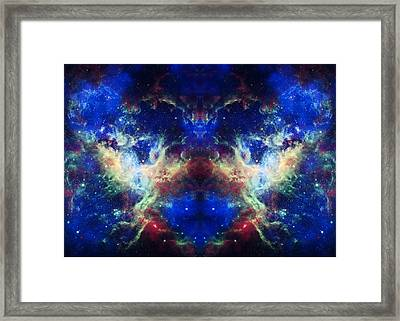 Tarantula Reflection 1 Framed Print by The  Vault - Jennifer Rondinelli Reilly