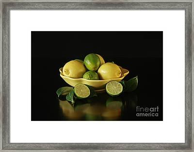 Tart And Tasty With Lemon And Lime Framed Print by Inspired Nature Photography Fine Art Photography
