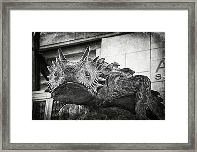 Tcu Horned Frog 2014 Framed Print by Joan Carroll