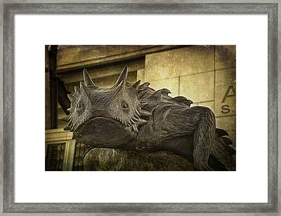 Tcu Horned Frog Framed Print by Joan Carroll