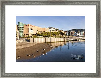Te Papa Wellington New Zealand Framed Print by Colin and Linda McKie
