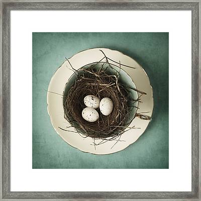 Tea For Three Framed Print by Amy Weiss