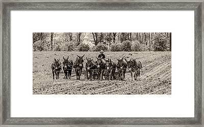 Team Of Eight Framed Print by Guy Whiteley