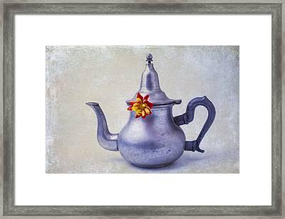 Teapot Dahlia Framed Print by Garry Gay