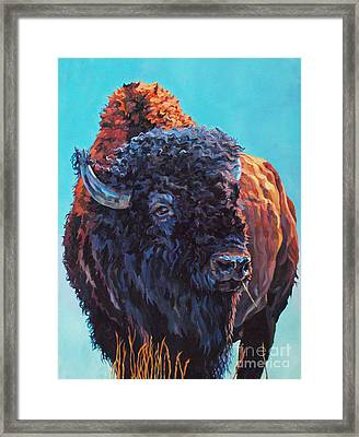 TED Framed Print by Patricia A Griffin