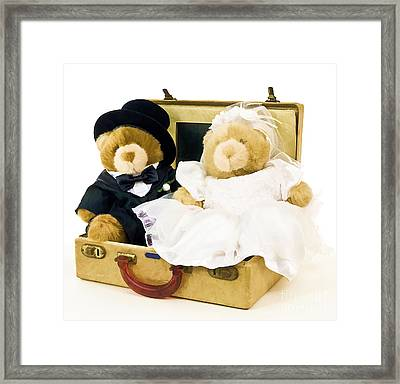 Teddy Bear Honeymoon Framed Print by Edward Fielding