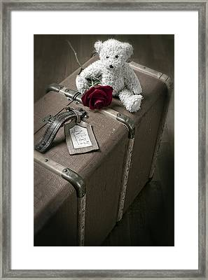 Teddy Wants To Travel Framed Print by Joana Kruse