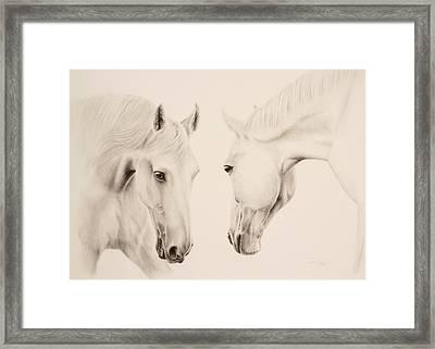 Tender Approach Framed Print by Tonya Butcher