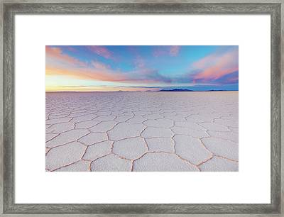 Tenderness Framed Print by Anna Gibiskys