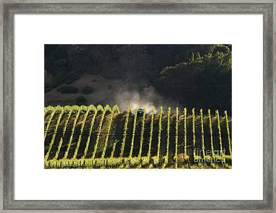 Tending A California Vineyard Framed Print by Ron Sanford