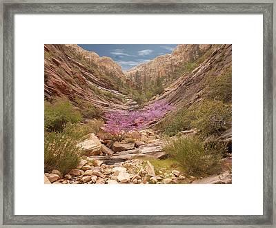 Terrace Canyon Framed Print by Alan Socolik